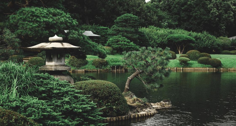 Conseils pour décorer le bassin de votre jardin dans un style japonais